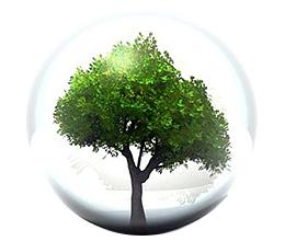 Environnement & certifications